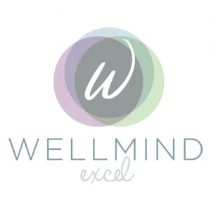Welcome to Wellmind Excel